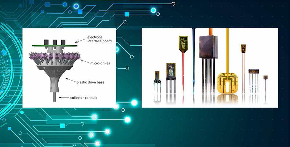 Különféle agyi elektródák - forrás: Hangya Balázs előadása