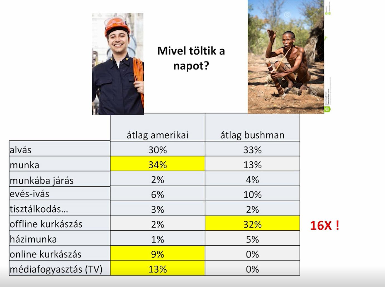 Időbeosztás az amerikaiak és a bushmanok életében - forrás: Topál József előadása