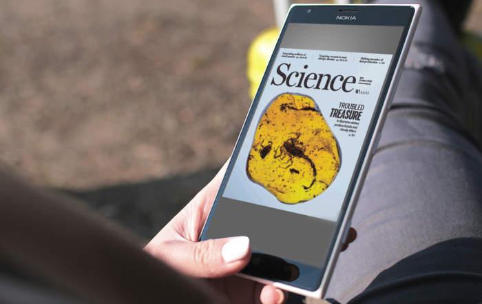 Új idegpálya a sajtóban - Science