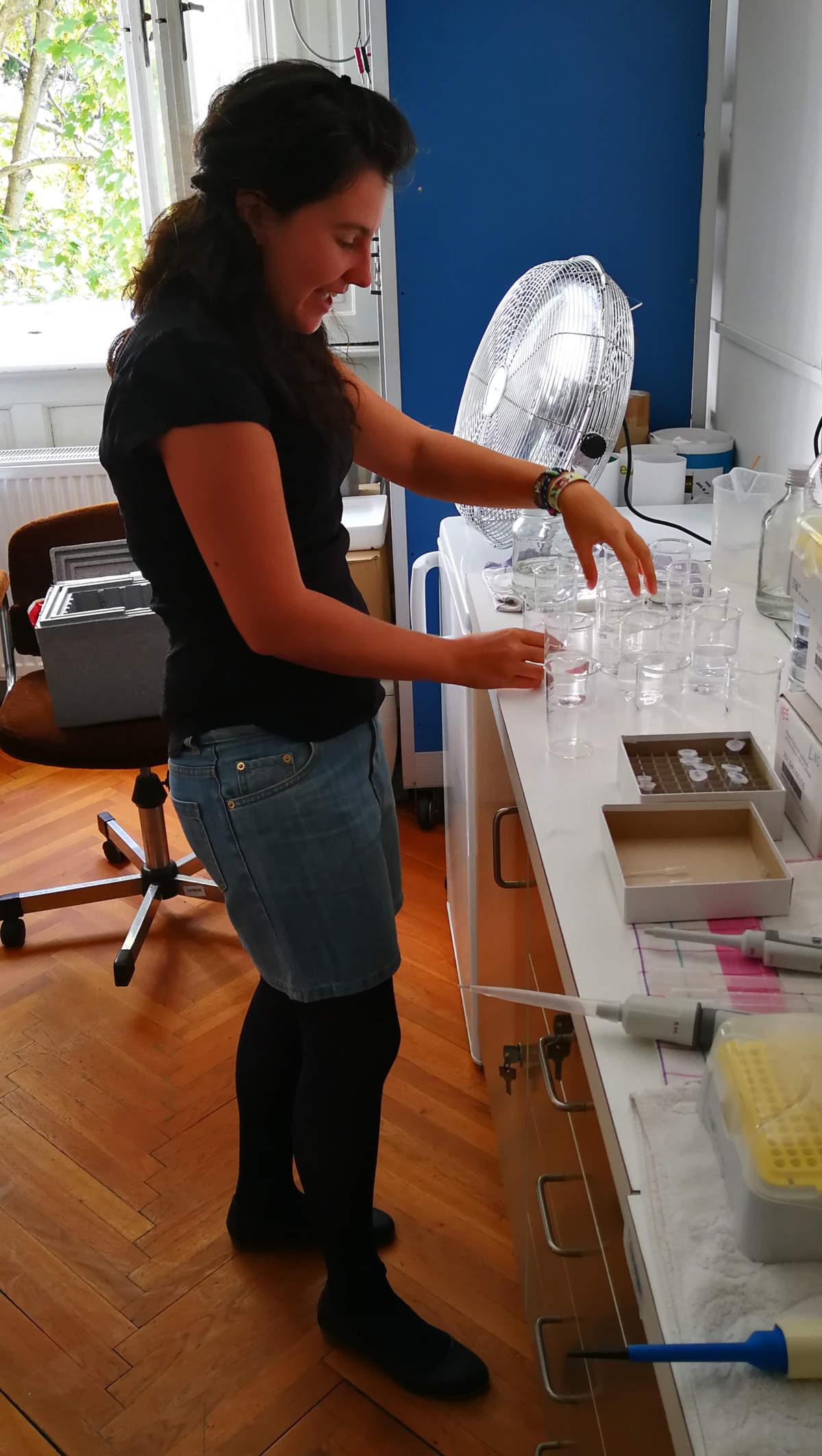 MTA-ÖK BLI_NAP Adaptációs Neuroetológiai Kutatócsoport – Svigruha Réka. Krónikus kezelési kísérlet a nagy vízibolha (Daphnia magna) tesztállaton a Balatonból kimutatható gyógyszerhatóanyagokkal