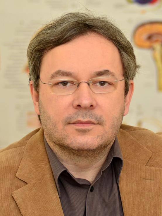 Agyi Szerkezet és Dinamika Kutatócsoport – Vidnyánszky Zoltán portré